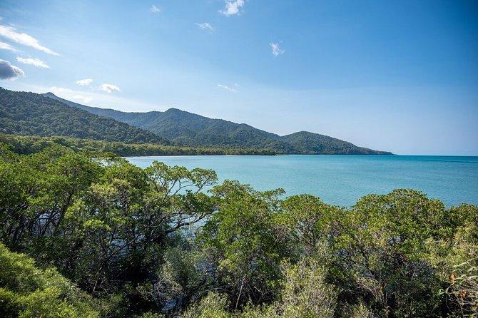 5 Day Australia Retreat: Queensland Daintree
