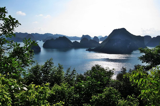 Halong Bay 2 Days with Viola Cruise 4 Star