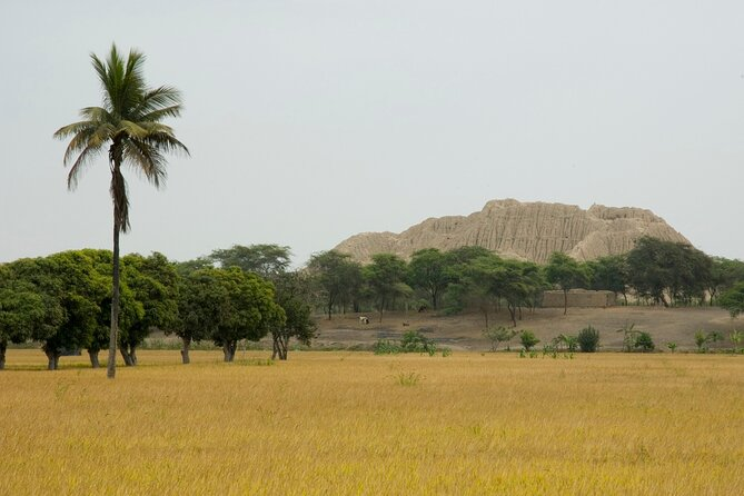 Tour to Túcume, Royal Tombs of Sipán museum and Huaca Rajada and lunch - Private