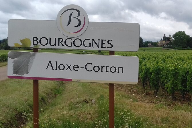 Burgundy Wine Lovers Tasting Tour with Private Driver