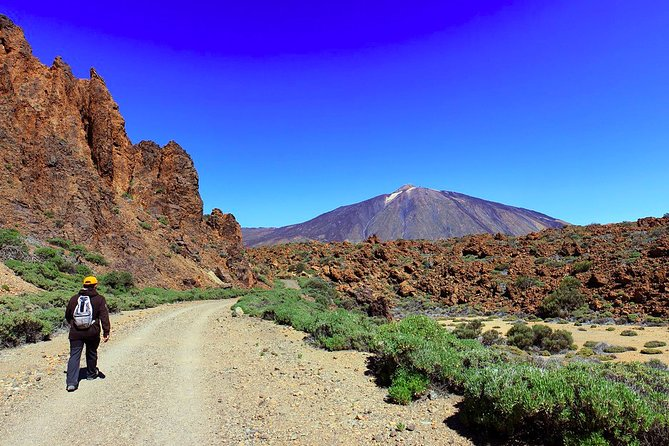 Private Full Day Tour to the Top of the Teide: go hiking and return in cable car