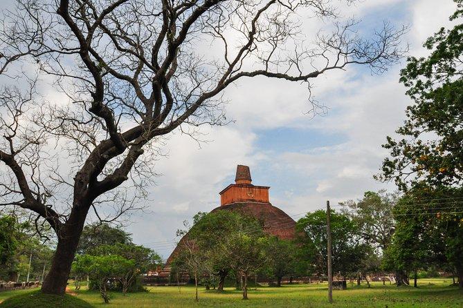 Sacred City of Anuradhapura from Jaffna