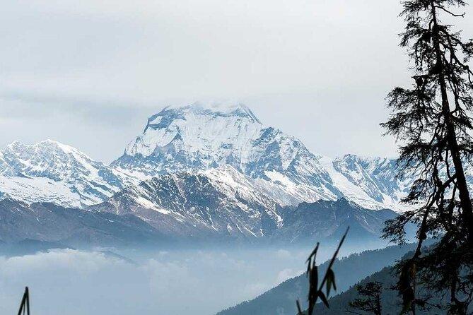 Annapurna Sanctuary Trek Including Round-Trip Domestic Flight