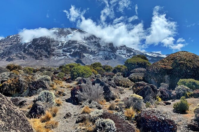 6 Days Marangu Route Kilimanjaro Hiking With Africa Natural Tours Co L.T.D