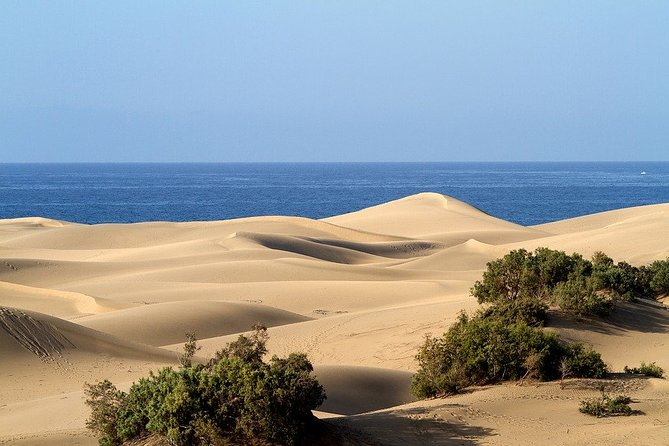 Private 5-hour Tour of Maspalomas with Optional 30 minutes Camel Ride