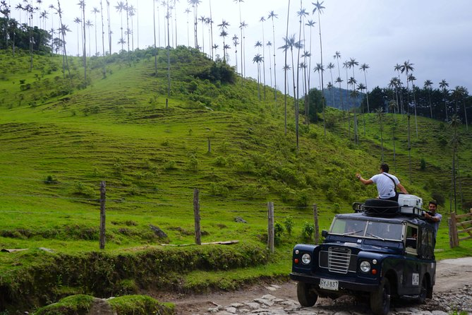 Full Day Tour of Cocora Valley, Salento, and Filandia Coffee Town (from Salento)