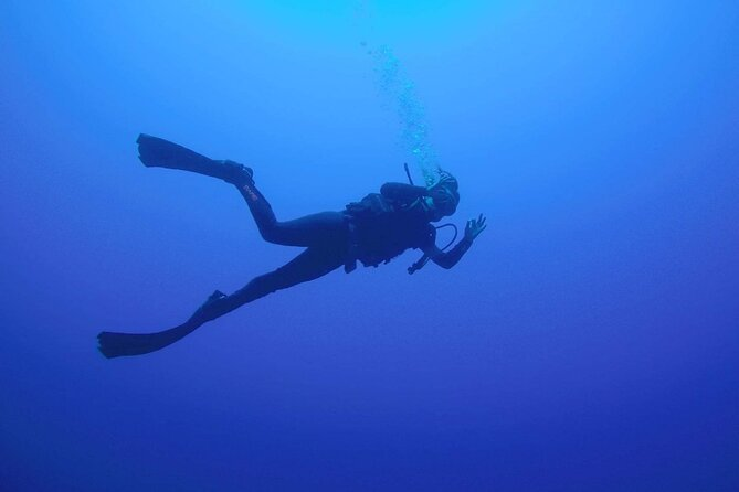 Half-Day Scuba Diving Experience