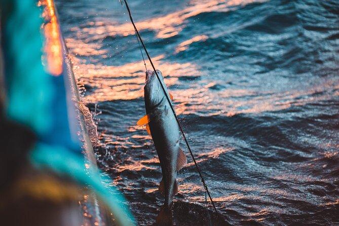 Half-Day Private Offshore Fishing Trip in Villanova