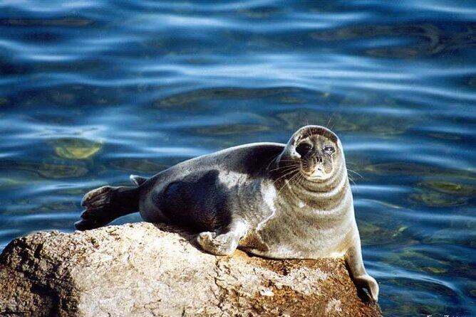 BAIKAL OLKHON ISLAND in summer: 3 days group tour