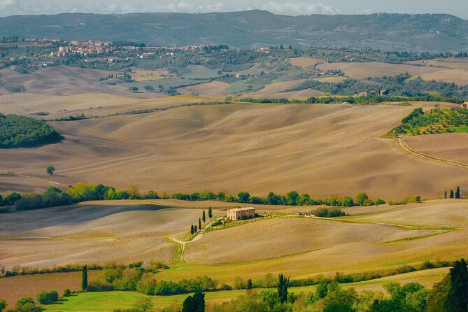 Tuscany Wine Tour: Montalcino and Montepulciano from Rome