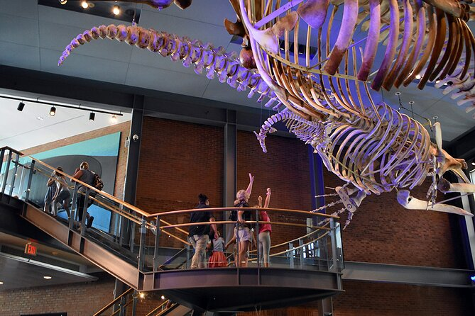 10:00 am Timed-Entry Visit to New Bedford Whaling Museum