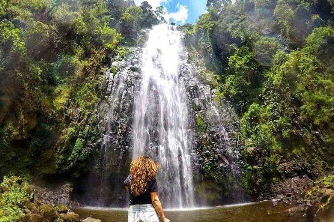 Day Tour to Materuni Waterfalls