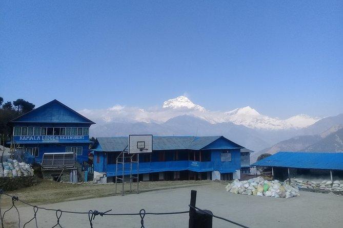 Poon Hill Trek - 5 Day / 4 Night (ex Kathmandu) - Daily Departure