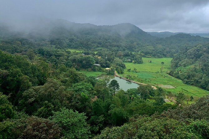 Day Trip to Coorg (Guided Sightseeing Tour by Car from Mysore)