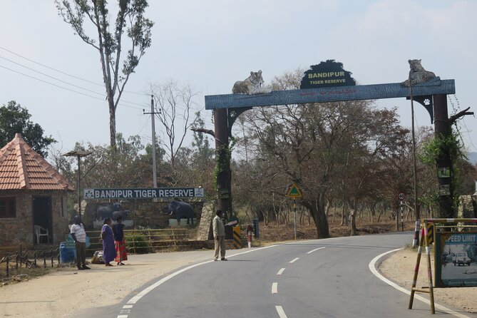 Day Trip to Bandipur National Park (Guided Sightseeing Tour by Car from Mysore)