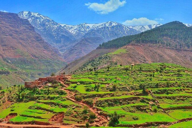 Marrakech: Berber Culture Experience & Atlas Mountains Tour