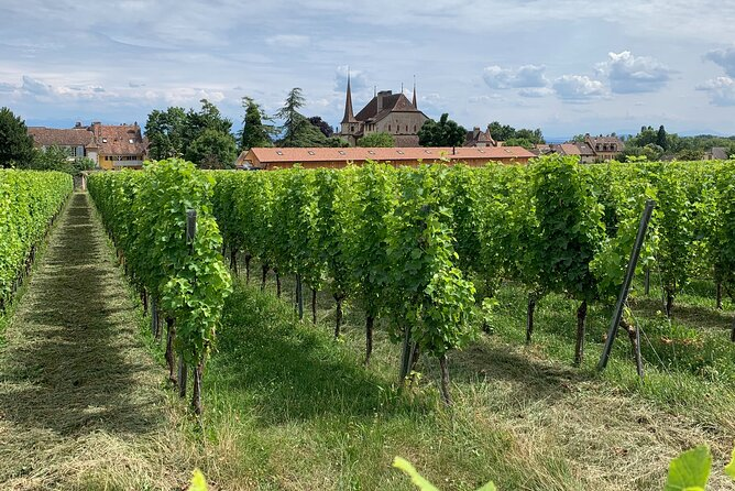 Neuchâtel's Castle & Wine Discovery From Bern
