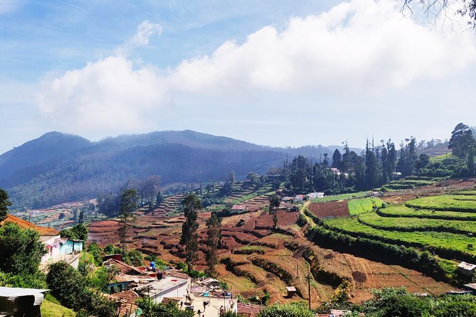 Muesum & Garden Tour of Ooty (4 Hours Guided Walking Tour)
