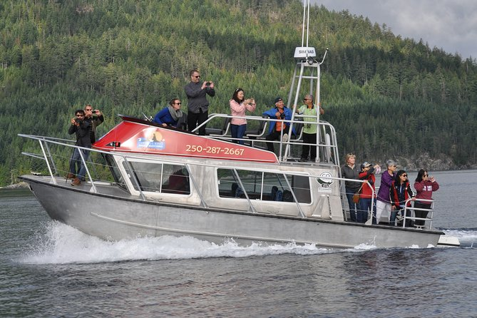 3 hour Covered Boat Evening Whale and Wildlife Tour