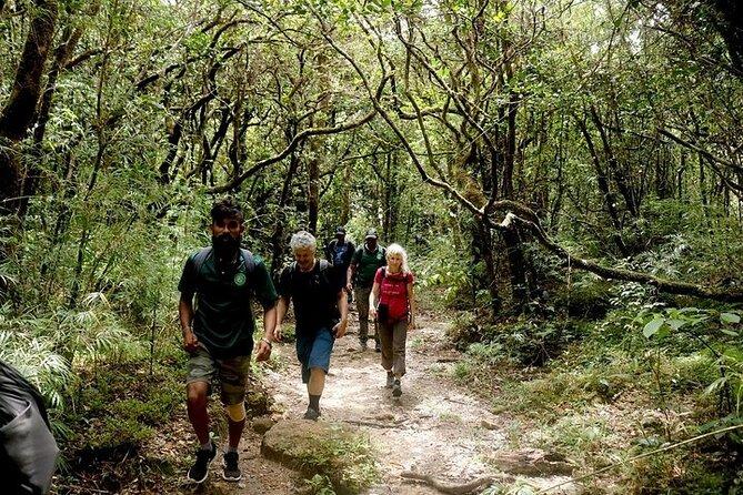 Hiking & Trekking in Knuckles Mountain Range