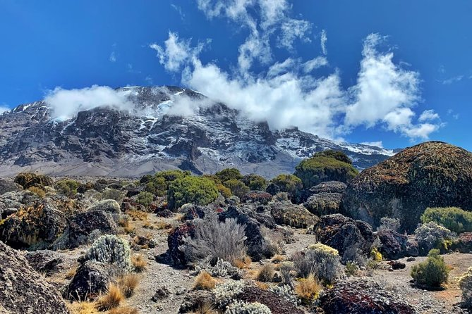 6 Days Marangu Route Kilimanjaro Hiking With Africa Natural Tours