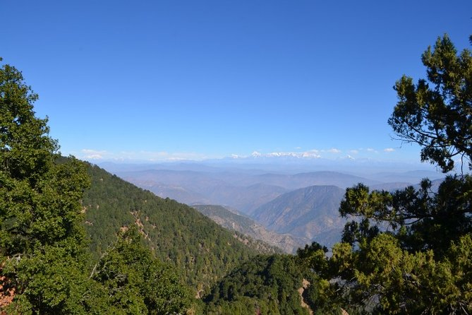 Nainital Nature Trekking Experience (4 Hours guided experience)