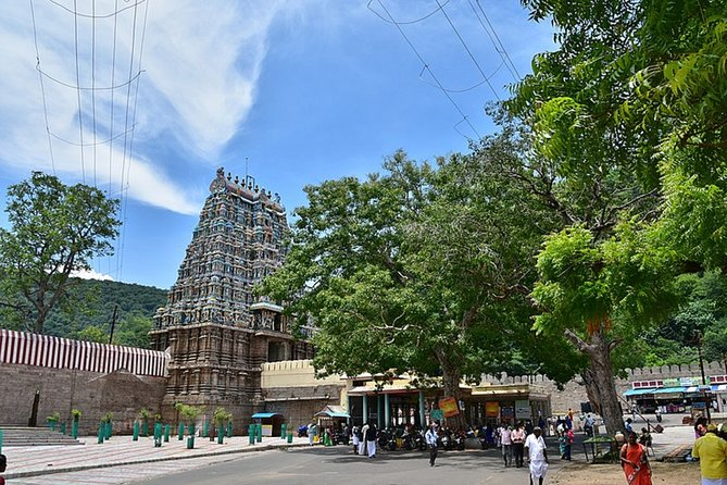 Nature & Spiritual Trails of Madurai (2 Hours Guided Walking Tour)