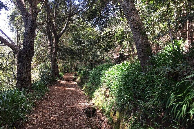 Vale Paraiso - Paradise Valley Walk