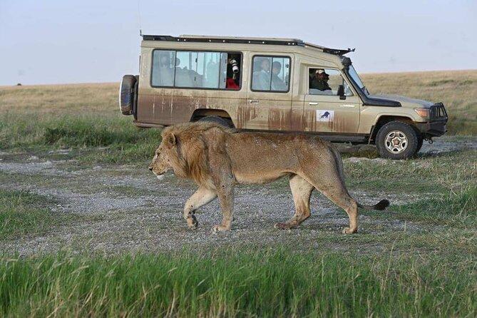 8 Days Private Family Tanzania wilderness Safari