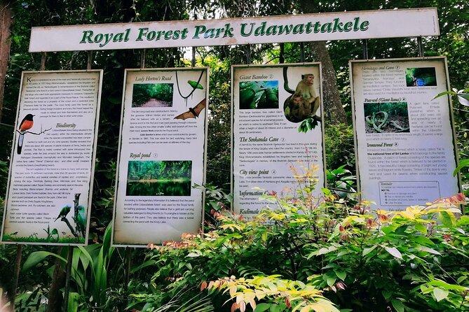 Walk Through Udawatta Kele Sanctuary with Guide