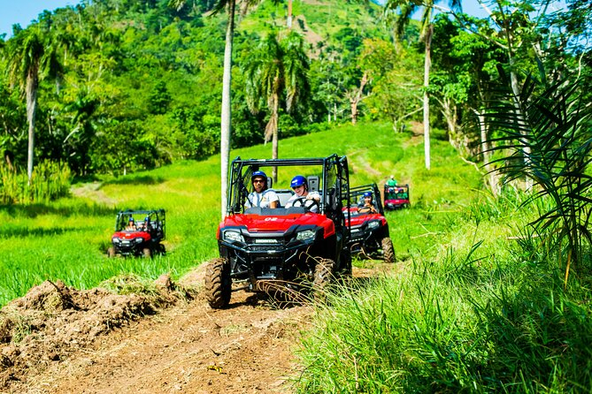Jungle Buggies + Ziplines Adventures