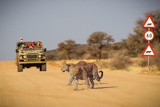 12 Day Classic Namibia Camping Safari