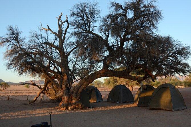 Enjoy 6 nights camping in the Namib Desert