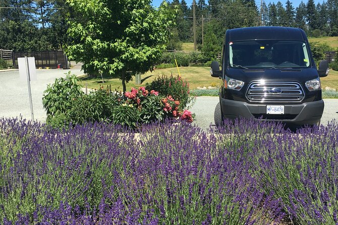 Private Small Group Transportation Cowichan Valley Wineries