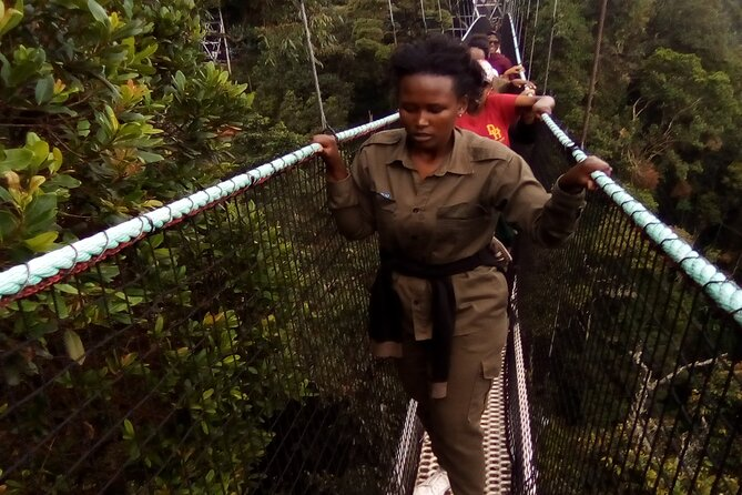 The Domestic tourists at canopy walk way.