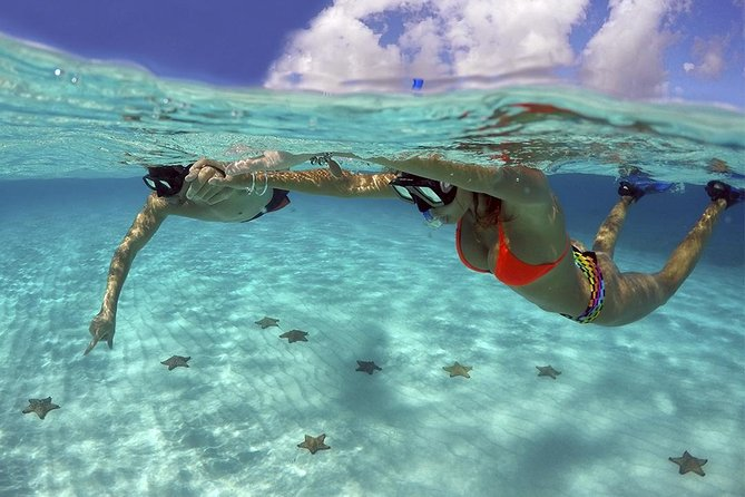 "Come to visit ""El Cielo"" at Cozumel with this complete Snorkeling Adventure"