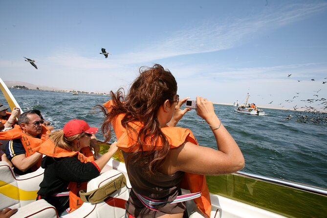 Tour to Paracas National Reserve