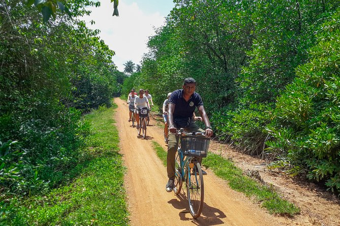 Adventure Cycling from Galle