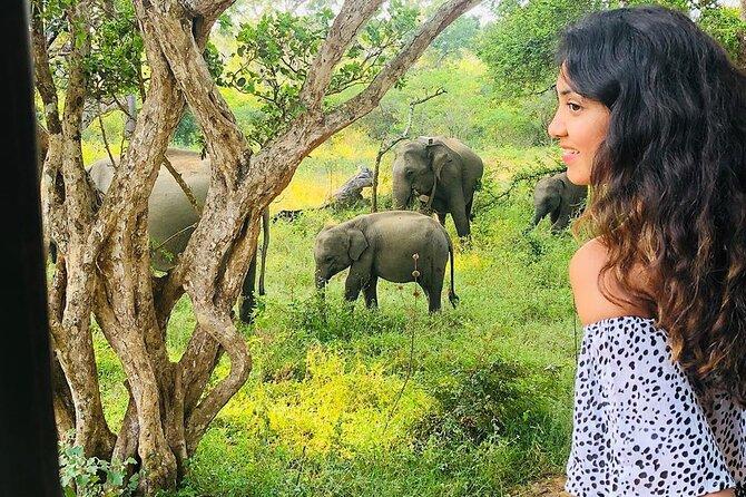 2 Days Wildlife Safari in Udawalawe & Yala
