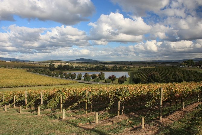 LGBT+ Friendly Full Day Yarra Valley & Dandenong Ranges Private Tour