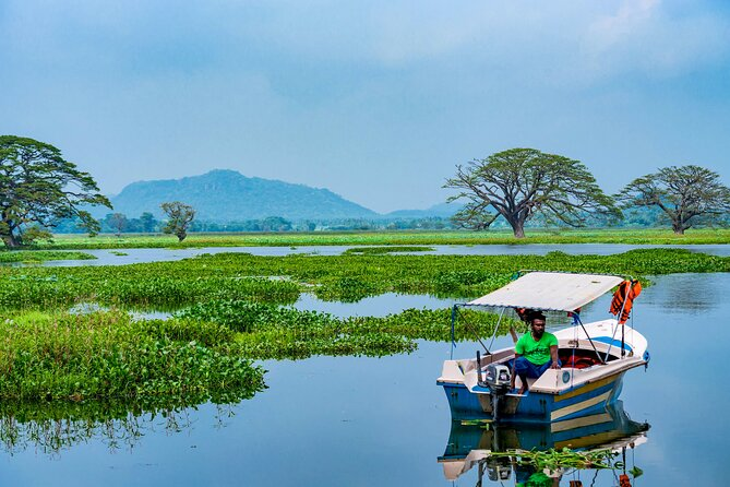 Boat Tour in Tissamaharama Lake
