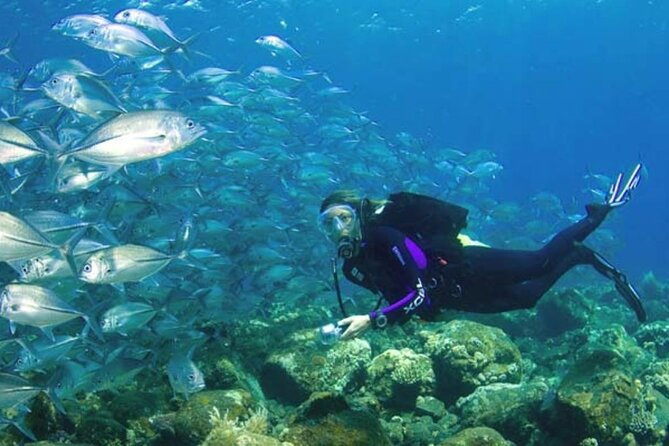 Fun Diving by Bali Diving