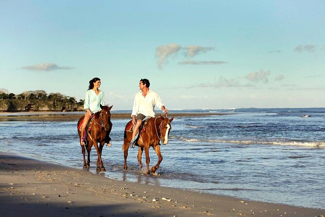 Horse Riding Experience in Bali