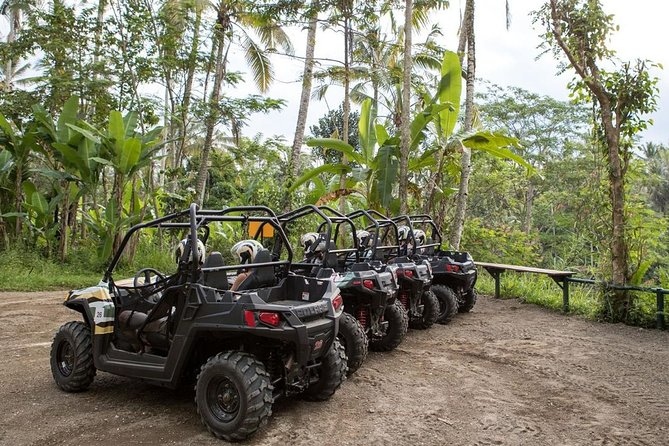 Jungle Buggies Experience by Mason Adventures in Bali
