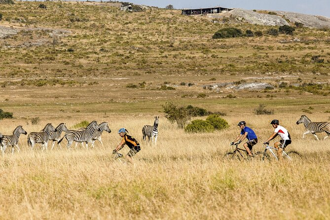 Safari Cycle and !Khwa ttu San Heritage Experience