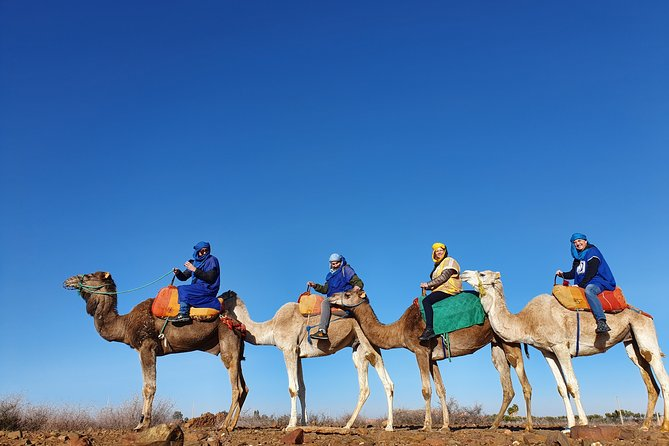Atlas Mountains & Berber Villages Guided Day Trip from Marrakech & Camel Ride