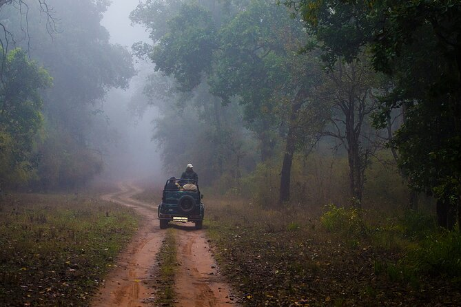 Full-Day Private Safari Tour to Ranthambore National Park