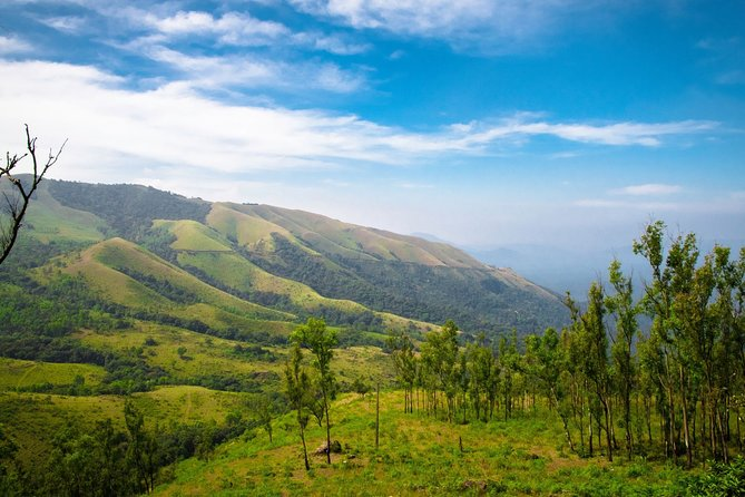 Day Trip to Chikmagalur (Guided Sightseeing Tour by Car from Mysore)