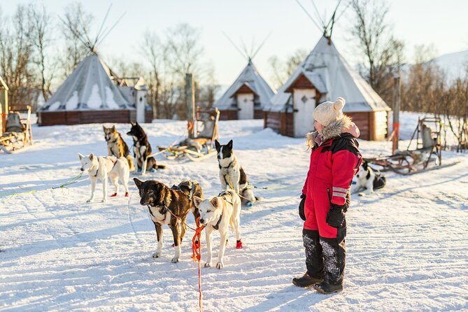 Rovaniemi 2 days Activities Package