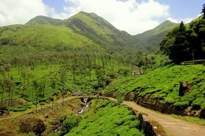 Day Trip to Wayanad (Guided Private Sightseeing Experience from Mysore)